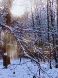 Vše, co sníh pokryje náhle zkrásní.