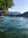 Jezero Bled.