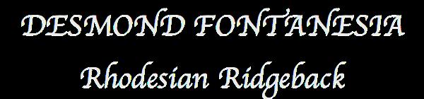 Desmond Fontanesia Rhodesian Ridgeback